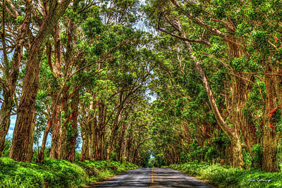 Photograph - The Tree Tunnel Too South Shore Kauai Hawaii Art by Reid Callaway