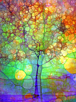 Photograph - The Tree Within by Tara Turner