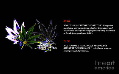 Digital Art - The Truth About Mary Jane by Jacqueline Lloyd
