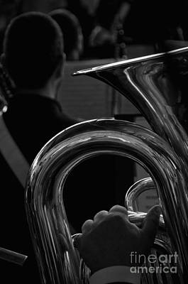 Photograph - The Tuba by Leonardo Fanini
