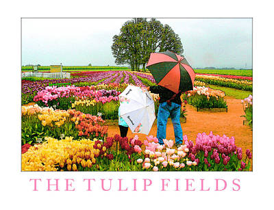 The Tulip Fields Art Print by Margaret Hood