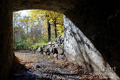 Photograph - The Tunnel by Elfriede Fulda