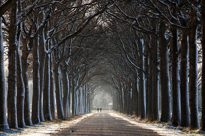 Winter Netherlands Photograph - The Tunnel by Martin Podt