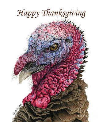 Wild Turkey Painting - The Turkey- Happy Thanksgiving Cards by Sarah Batalka
