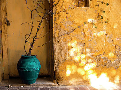 Photograph - The Turquoise Pot by Rae Tucker