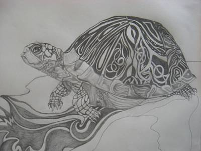 Abstract Design Drawing - The Turtle by Theodora Dimitrijevic