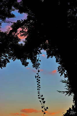 Photograph - The Twilight Vine by Endre Balogh