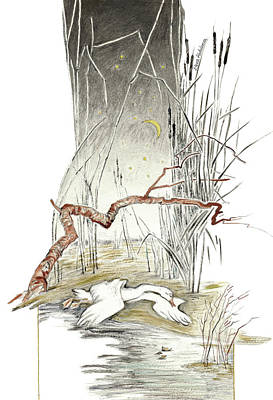 Bulrush Drawing - The Ugly Duckling - All Alone, Cold And Hungry In Marsh Reeds - Illustration For Classic Fairy Tale by Elena Abdulaeva