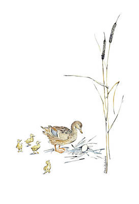 Bulrush Drawing - The Ugly Duckling - Mother Duck, Large Egg, And Four Ducklings - Illustration For Classic Fairy Tale by Elena Abdulaeva