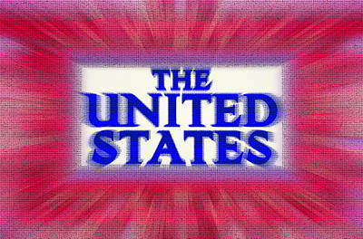 The United States Sign Art Print by Steve Ohlsen