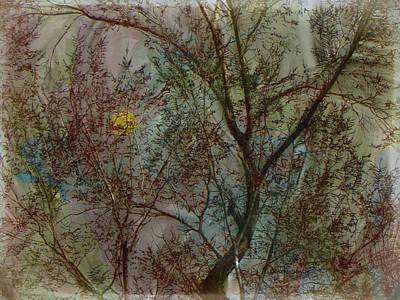 Impressionist Mixed Media - The Universe In A Tree by Lenore Senior