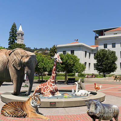 Bay Area Digital Art - The University Of California Berkeley Welcomes You To The Zoo Please Do Not Feed The Animals Square by Wingsdomain Art and Photography