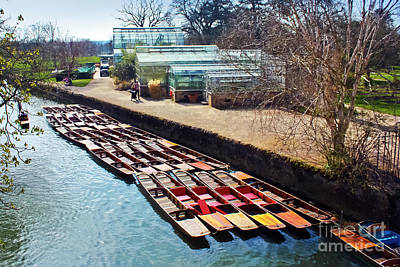 Photograph - The University Of Oxford Botanic Garden And Punts by Terri Waters