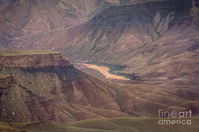 Photograph - The Unkar Delta by Robert Bales