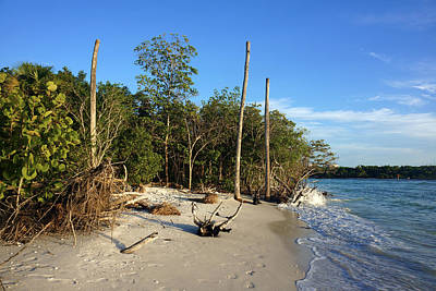 The Unspoiled Beauty Of Barefoot Beach In Naples - Landscape Art Print