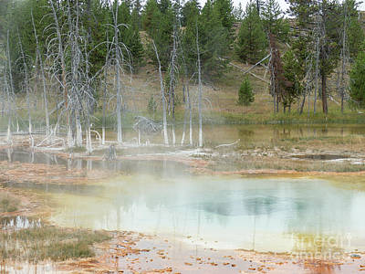 Photograph - The Upper Geyser Basin by Rod Jones