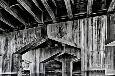 Photograph - The Urban Jungle by Brad Allen Fine Art
