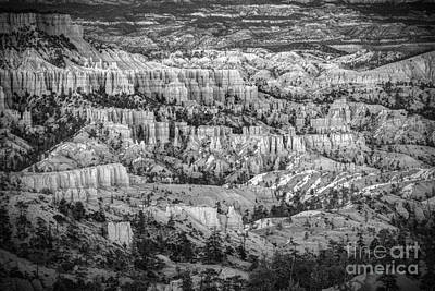Photograph - The Vastitude Of Bryce by Jennifer Magallon