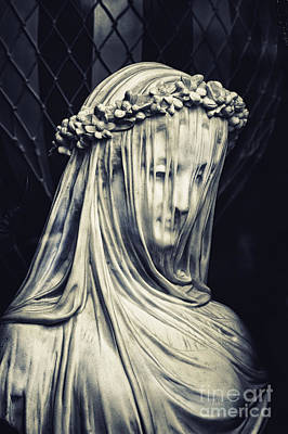 Photograph - The Veiled Maiden by Tim Gainey