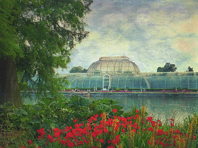 The Victorian Palm House  Art Print by Connie Handscomb