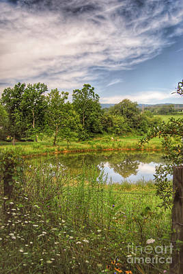 Photograph - The View Along Deerfield Trail by Kerri Farley