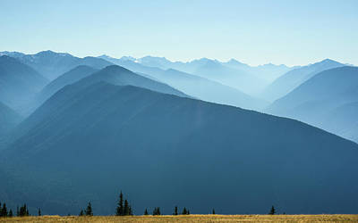 Photograph - The View From Hurricane Ridge by Ronda Broatch