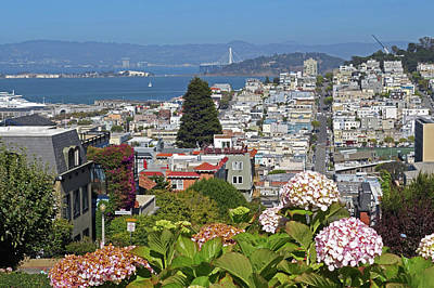Photograph - The View From Lombard Street San Francisco Ca by Toby McGuire