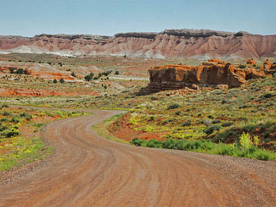 Photograph - The View Towards Capitol Reef by David King