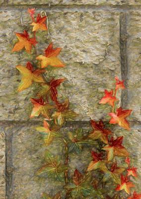 Digital Art - The Vine by Ernie Echols