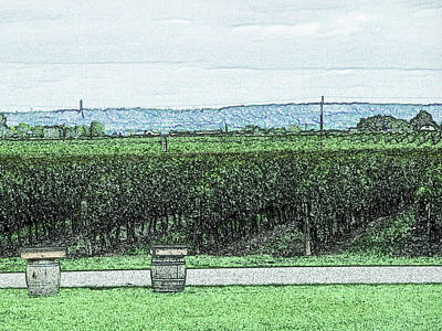 Grapes Digital Art - The Vineyards Of Niagara Region by Leslie Montgomery