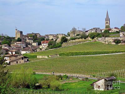 Caberet Photograph - The Vineyards Of Saint-emilion by Rod Jones