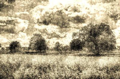 Photograph - The Vintage Farm by David Pyatt