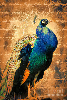 Digital Art - The Proud Peacock by Tina LeCour