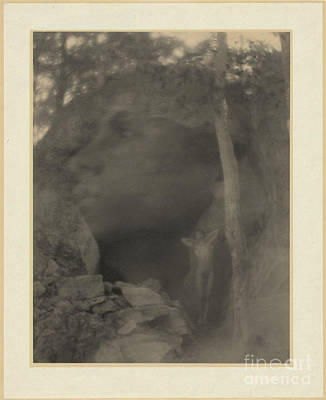 Suggestive Photograph - The Vision In Orpheus, F. Holland Day by Science Source