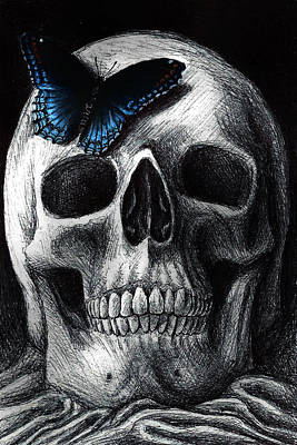 Human Skull Drawing - The Visit by Danielle Trudeau