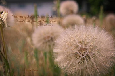 Photograph - The Voice Of God Is Like The Wind by Mick Anderson
