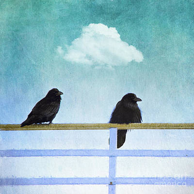 Two Crows Photograph - The Wait by Priska Wettstein