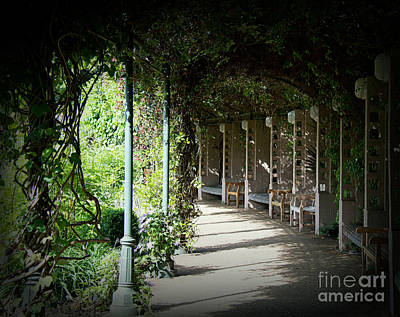 Photograph - The Walkway by Lisa L Silva