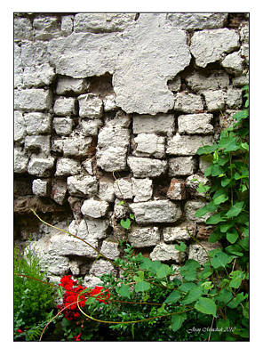 Photograph - The Wall by Joan  Minchak