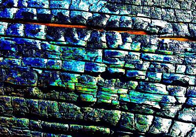 Painting - The Wall Of Bark by Jennifer Lake