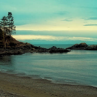 Photograph - The Washington Coast by David Patterson