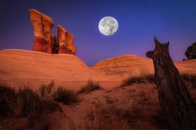 Escalante Photograph - The Watcher by Edgars Erglis