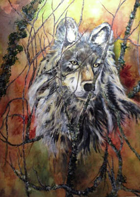Alpha Wolf Mixed Media - The Watcher In The Woods by Patricia E Lanteri