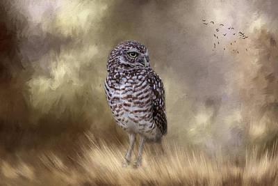 Photograph - The Watchful Eye by Kim Hojnacki