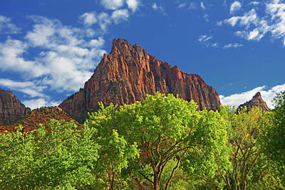 Photograph - The Watchman 4 by Raymond Salani III