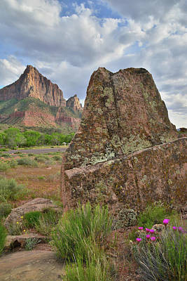 Photograph - The Watchman IIi by Ray Mathis
