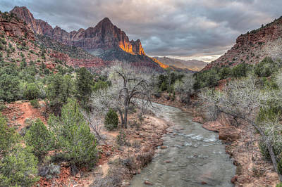 Photograph - The Watchman by Paul Schultz