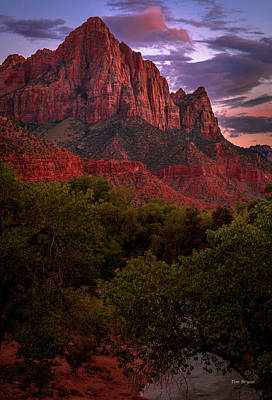 Photograph - The Watchman by Tim Bryan