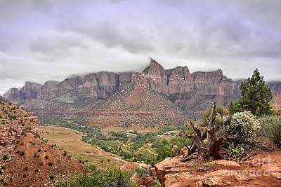 Photograph - The Watchman Trail by Debbie Green