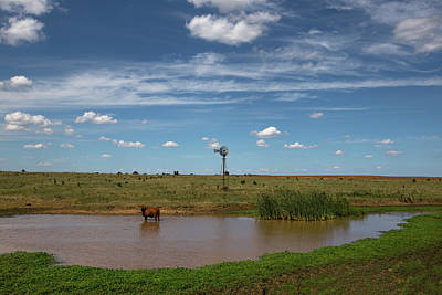 Photograph - The Watering Hole Windmill by Chris Harris